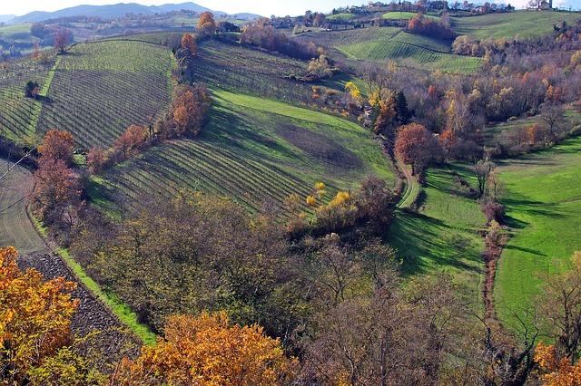Parma 2021: il virtual Tour anticipa la bellezza di un territorio da scoprire! Cosa vedere