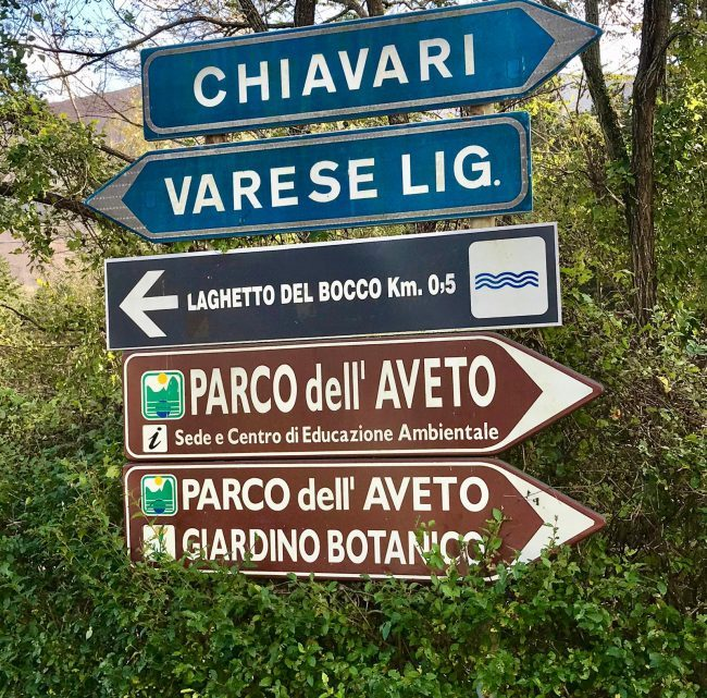 Passo del Bocco: percorso al lago e itinerario per ciclisti