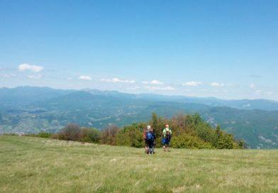 Monte Molinatico: un'escursione meravigliosa alla portata di tutti