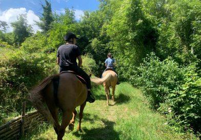 Ippovia Parmense: un itinerario da favola e ricco di benefici